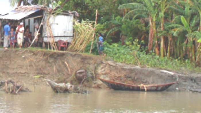 নদী ভাঙনে রামগতি-কমলনগরের মানুষ বিপর্যস্ত